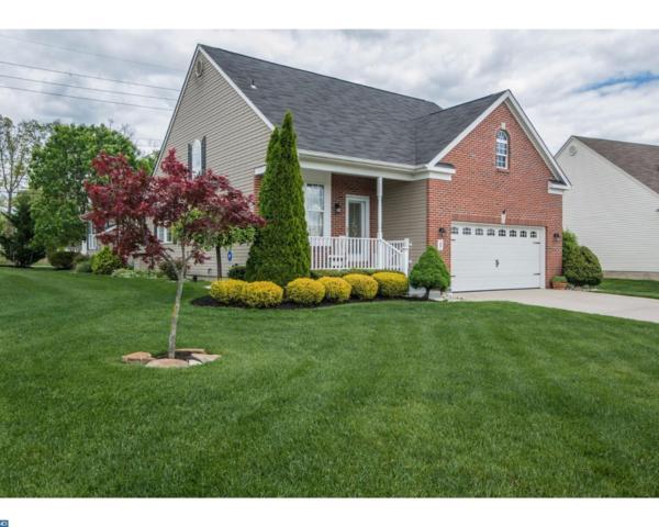 1 Silver Creek Drive, Mantua, NJ 08051 (MLS #7030659) :: The Dekanski Home Selling Team