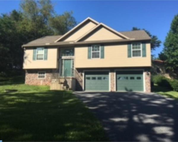 937 Wynonah Drive, Auburn, PA 17922 (#7032192) :: Ramus Realty Group