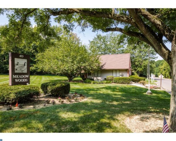 510 Meadow Woods Lane #510, Lawrenceville, NJ 08648 (MLS #7032443) :: The Dekanski Home Selling Team