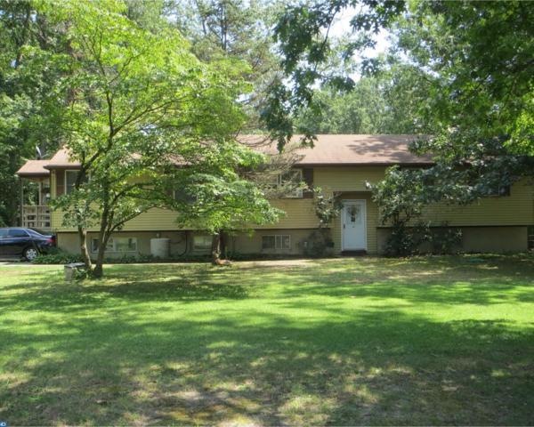 1852 Williamstown Road, Franklinville, NJ 08322 (MLS #7032711) :: The Dekanski Home Selling Team