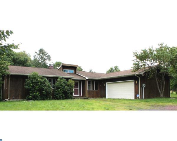 702 W Deer View Drive, Auburn, PA 17922 (#7033646) :: Ramus Realty Group
