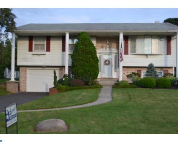 930 Jacks Lane, Orwigsburg, PA 17961 (#7034421) :: Ramus Realty Group