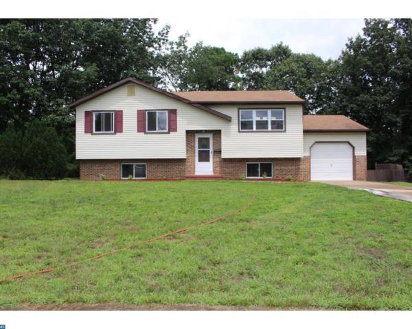 8 Centaurian Court, Berlin, NJ 08091 (MLS #7035850) :: The Dekanski Home Selling Team