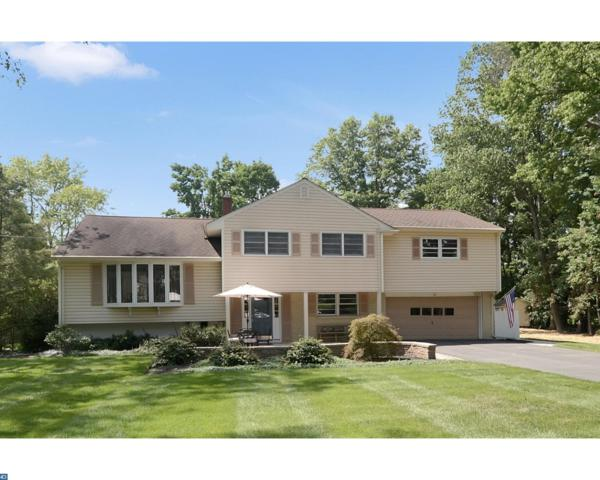 13 Blackfoot Road, Hopewell, NJ 08534 (MLS #7036191) :: The Dekanski Home Selling Team