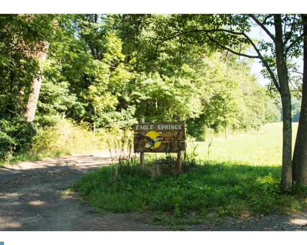 58 Eagle Springs Road, Pine Grove, PA 17963 (#7037502) :: Ramus Realty Group