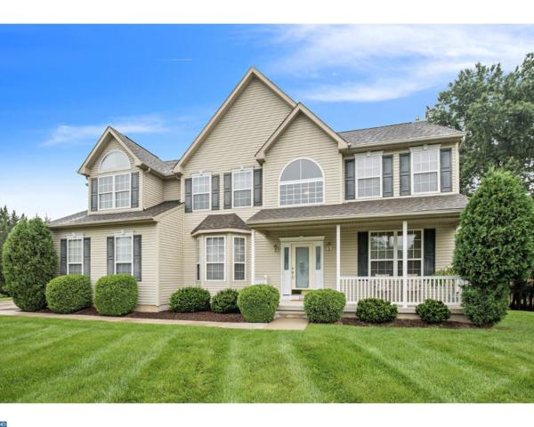 732 Welsh Lane, Williamstown, NJ 08094 (MLS #7038434) :: The Dekanski Home Selling Team