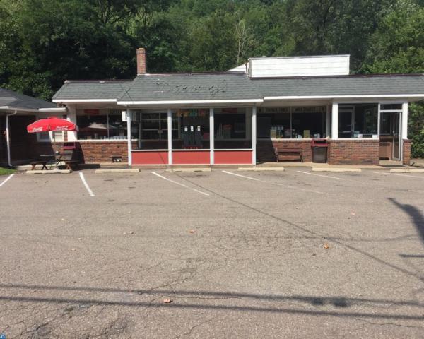 630 S Hoffman Boulevard, Ashland, PA 17921 (#7039643) :: Ramus Realty Group