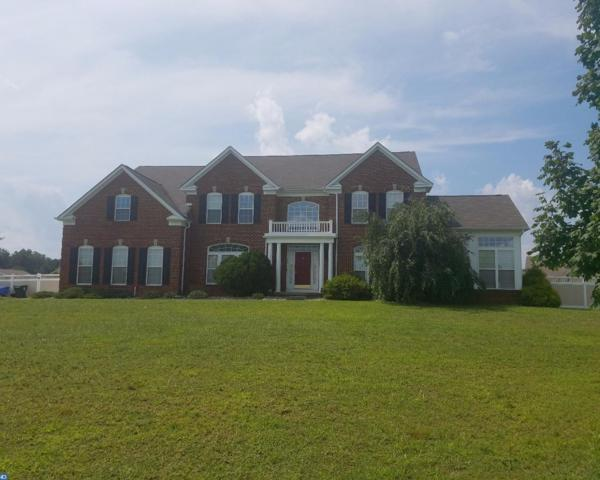 34 Kristen Lane, Mantua, NJ 08051 (MLS #7039697) :: The Dekanski Home Selling Team