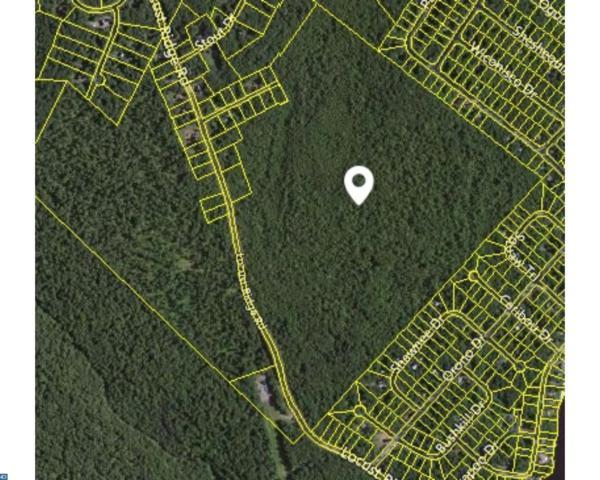 45039 Lr, Pocono Lake, PA 18347 (#7039877) :: Erik Hoferer & Associates