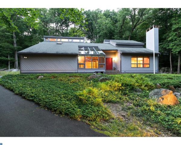 1177 Stuart Road, Princeton, NJ 08540 (MLS #7040823) :: The Dekanski Home Selling Team