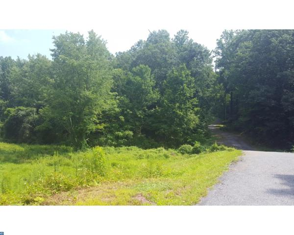 0 Route 10, Mohnton, PA 19540 (#7041005) :: Ramus Realty Group