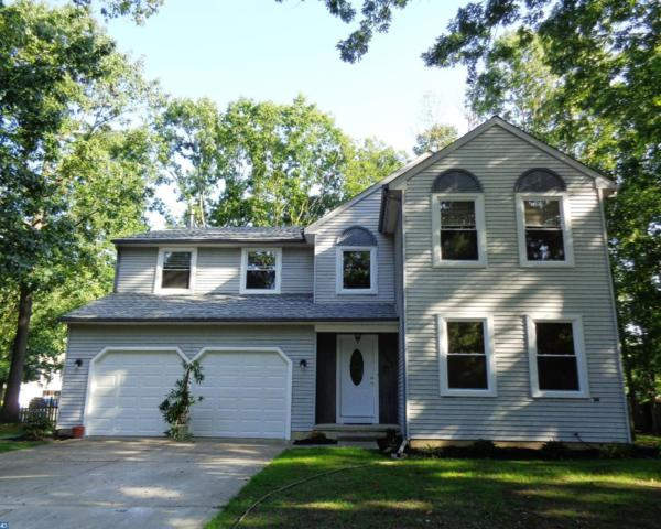 101 Ebbetts Drive, Atco, NJ 08004 (MLS #7042672) :: The Dekanski Home Selling Team