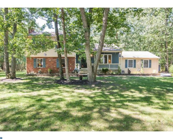 28 Elmwood Drive, Tabernacle, NJ 08088 (MLS #7043200) :: The Dekanski Home Selling Team