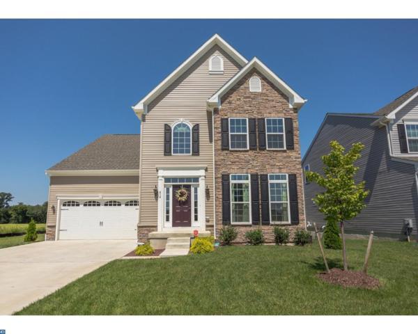 414 Crispin Way, Glassboro, NJ 08028 (MLS #7043373) :: The Dekanski Home Selling Team