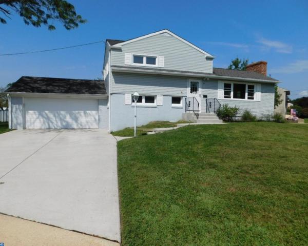 101 Sylvan Terrace, Glassboro, NJ 08028 (MLS #7045836) :: The Dekanski Home Selling Team