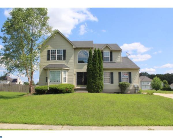 117 Ryans Run, Sicklerville, NJ 08081 (MLS #7046511) :: The Dekanski Home Selling Team