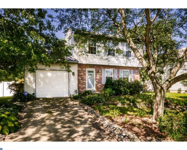 349 Aqua Lane, Atco, NJ 08004 (MLS #7047228) :: The Dekanski Home Selling Team