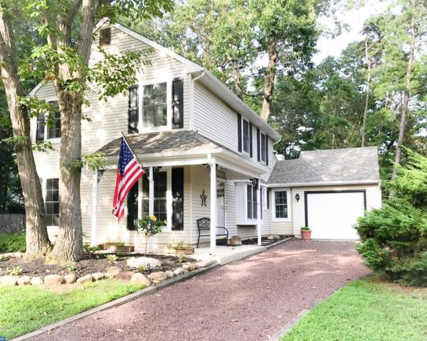 8 Bayberry Court, Atco, NJ 08004 (MLS #7047704) :: The Dekanski Home Selling Team