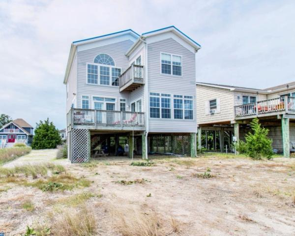 115 Beach Plum Drive, Milford, DE 19963 (MLS #7047846) :: RE/MAX Coast and Country