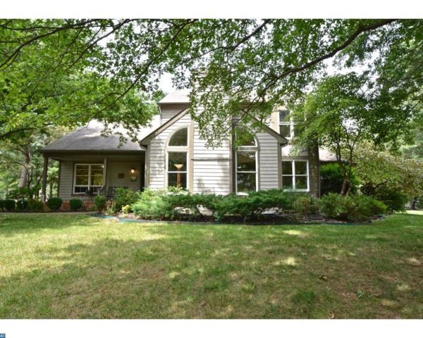 2 Baldwin Court, Pennington, NJ 08534 (MLS #7049455) :: The Dekanski Home Selling Team