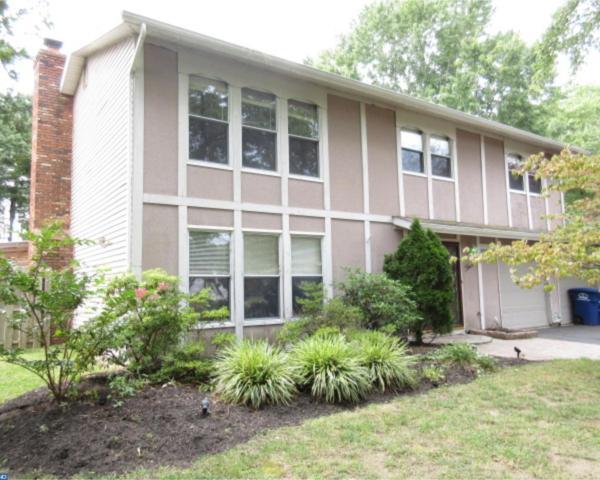 3 Darby Cir W, Eastampton, NJ 08060 (MLS #7051767) :: The Dekanski Home Selling Team