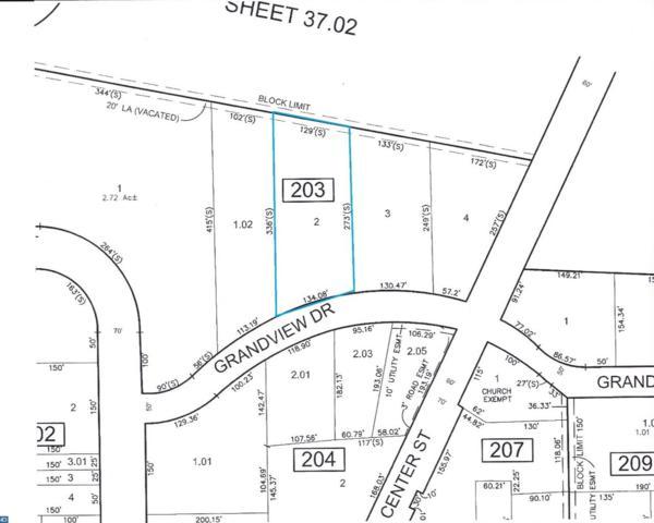 L2 Grandview Drive, Sewell, NJ 08080 (MLS #7054874) :: The Dekanski Home Selling Team