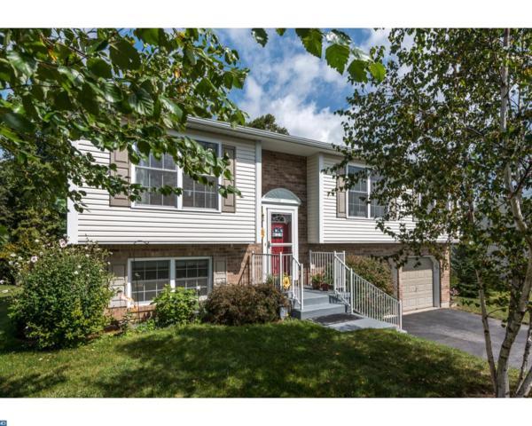 29 Mountain View Lane, Pottsville, PA 17901 (#7056359) :: Ramus Realty Group