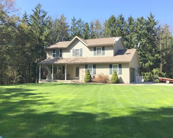107 Fork Mountain Road, Auburn, PA 17922 (#7056521) :: Ramus Realty Group