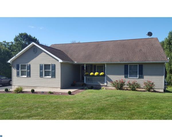21 Hidden Acres Drive, Pine Grove, PA 17963 (#7056580) :: Ramus Realty Group