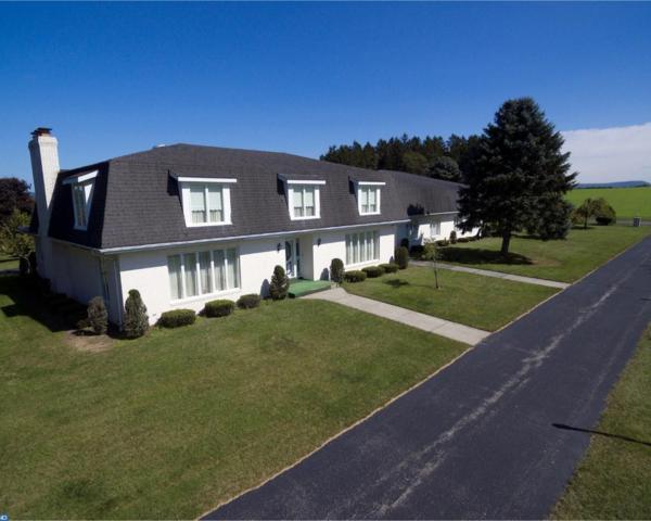 121 Brandonville Road, Ringtown, PA 17967 (#7056810) :: Ramus Realty Group