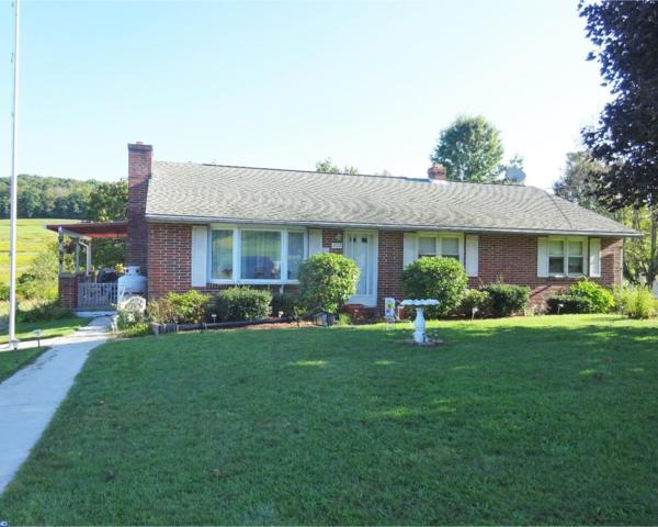 1722 Long Run Road, Schuylkill Haven, PA 17972 (#7057026) :: Ramus Realty Group