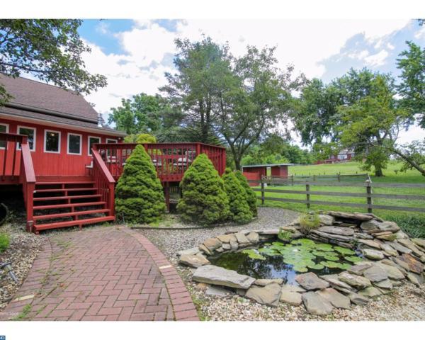490 Siegfriedale Road, Kutztown, PA 19530 (#7057042) :: Ramus Realty Group