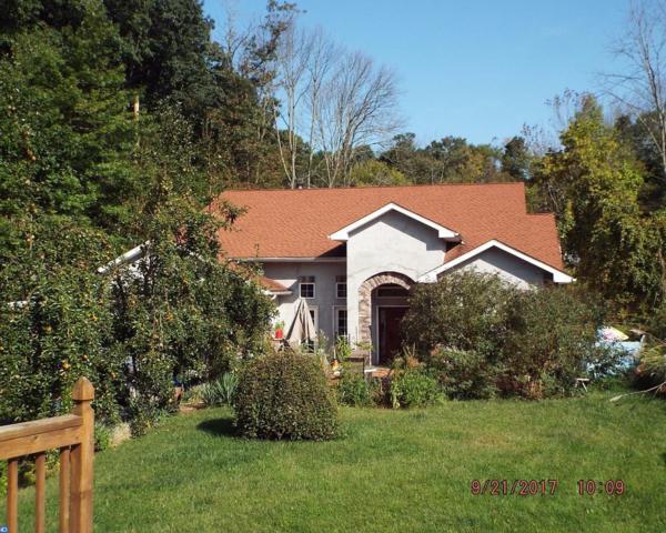 361 Sweet Arrow Lake Road, Pine Grove, PA 17963 (#7057140) :: Ramus Realty Group