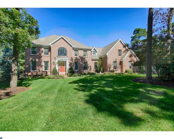8 Cliffswallow Drive, Medford, NJ 08055 (MLS #7058626) :: The Dekanski Home Selling Team