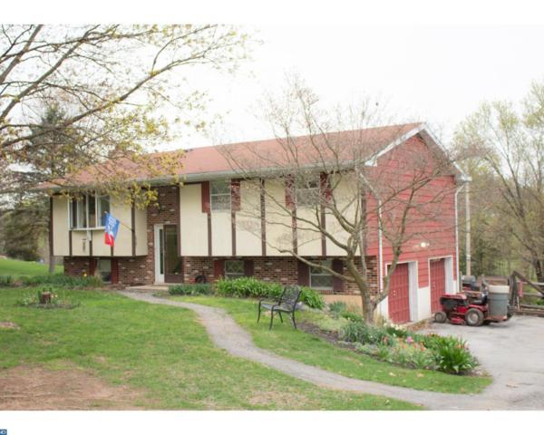101 Cross Key Road, Bernville, PA 19506 (#7058788) :: Ramus Realty Group