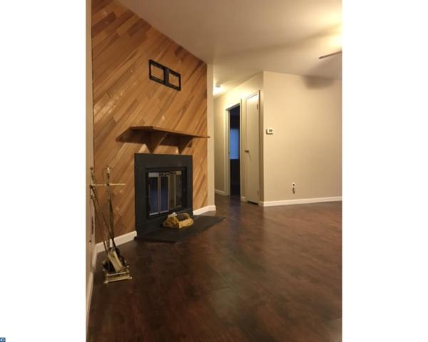 2324 Old Stone Mill Drive, East Windsor, NJ 08512 (MLS #7058969) :: The Dekanski Home Selling Team