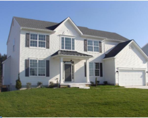 368 Staggerbush Road, Williamstown, NJ 08094 (MLS #7059013) :: The Dekanski Home Selling Team