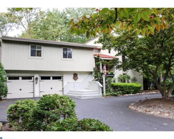 40 Tallowood Drive, Medford, NJ 08055 (MLS #7060777) :: The Dekanski Home Selling Team