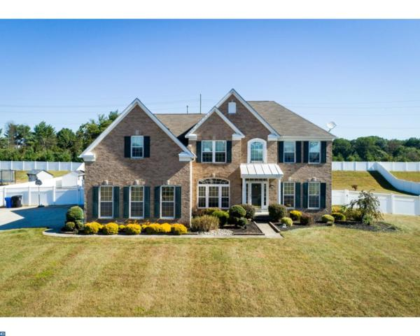 39 Kristen Lane, Mantua, NJ 08051 (MLS #7062774) :: The Dekanski Home Selling Team
