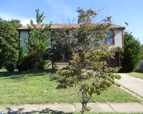 213 Ipswich Lane, Williamstown, NJ 08094 (MLS #7062897) :: The Dekanski Home Selling Team