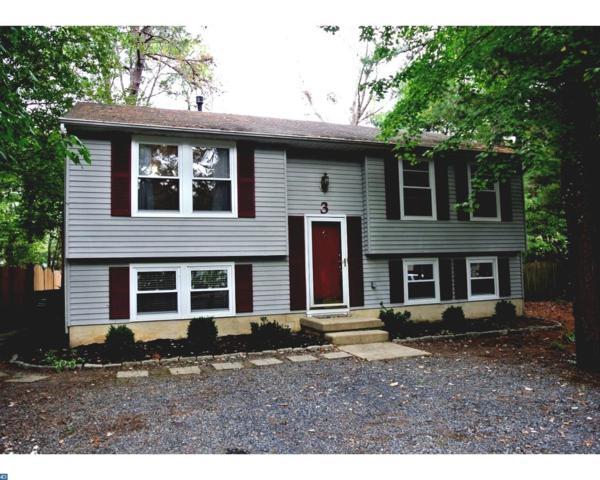 3 Adams Court, Evesham, NJ 08053 (MLS #7064629) :: The Dekanski Home Selling Team