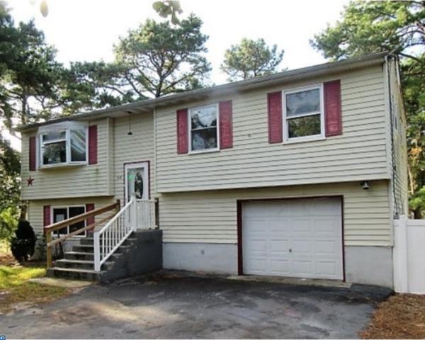 318 Cherokee Drive, Browns Mills, NJ 08015 (MLS #7067357) :: The Dekanski Home Selling Team