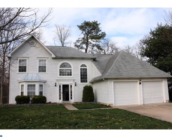 64 Wildcat Branch Drive, Sicklerville, NJ 08081 (MLS #7068588) :: The Dekanski Home Selling Team