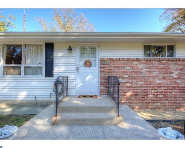 300 Lelache Avenue, Atco, NJ 08004 (MLS #7071598) :: The Dekanski Home Selling Team