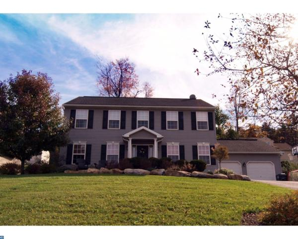 309 Elm Lane, Orwigsburg, PA 17961 (#7080116) :: Ramus Realty Group