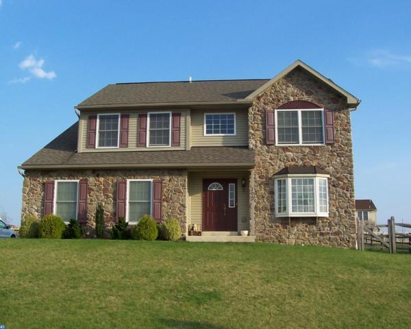 100 Dogwood Drive, Bernville, PA 19506 (#7080999) :: Ramus Realty Group
