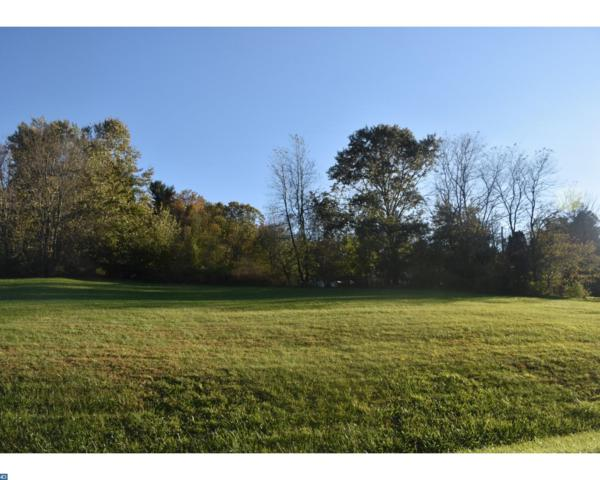 728 Wynonah Drive, Auburn, PA 17922 (#7081080) :: Ramus Realty Group
