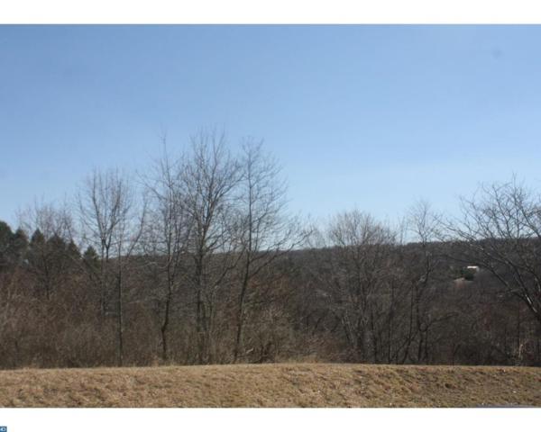 890 Red Oak Cove, Auburn, PA 17922 (#7082127) :: Ramus Realty Group