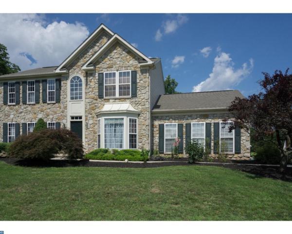 905 Bramblewood Drive, Douglassville, PA 19518 (#7087497) :: Ramus Realty Group