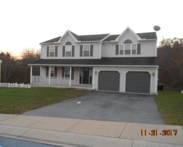 204 Cherry Street, Pine Grove, PA 17963 (#7087562) :: Ramus Realty Group